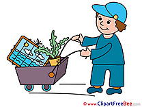 Cart Tranportation Pics free Illustration