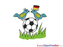 Birds Ball Pics Football Illustration