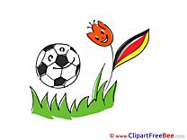 Flower Ball Pics Football free Image