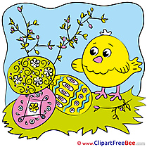 Eggs Spring Chicken Pics printable Cliparts