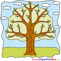 Tree Sky Clouds Pics free Illustration