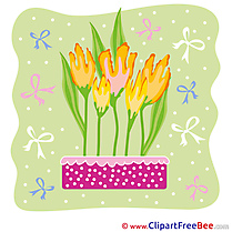 Tulips Ribbons Images download free Cliparts