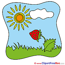 Strawberry Sun free Illustration Summer