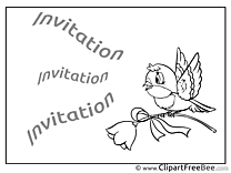 Bird free Postcards Invitations