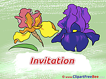 Flowers Wishes Invitations free eCards