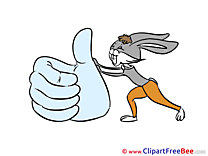 Hare Thumbs up Illustrations for free
