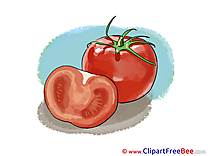 Drawing Tomatoes free Cliparts for download