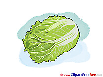 Lettuce free printable Cliparts and Images