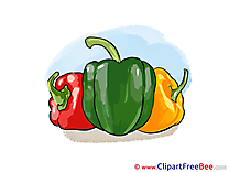 Peppers Clipart free Illustrations