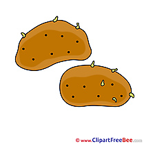 Picture Potatoes Pics download Illustration