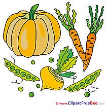 Pumpkin Vegatables Pics printable Cliparts