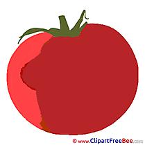 Tomato Pics download Illustration