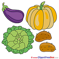 Veggies Pumpkin Cabbage free printable Cliparts and Images