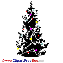 Black Christmas Tree Pics Winter free Image