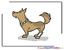 Animal Dog Pics free Illustration