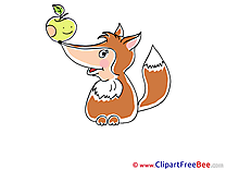 Apple Fox Clipart free Illustrations