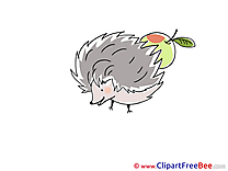 Apple Hedgehog Clipart free Image download