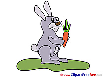 Carrot Hare download printable Illustrations