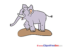 Clipart Elephant  free Illustrations