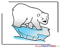 Floe Polar Bear Cliparts printable for free