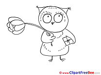 Owl Clipart free Illustrations