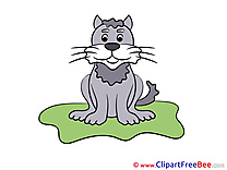 Pics Cat printable Cliparts