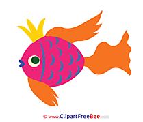 Pics free Fish download Image