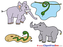 Rhino Snakes Clip Art download for free