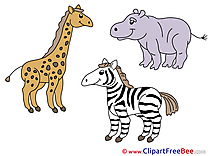 Safari Animals free printable Cliparts and Images