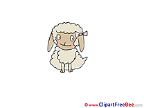 Sheep Images download free Cliparts