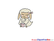 Tea Sheep Pics free download Image