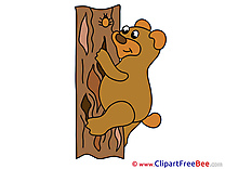 Tree Bear Pics printable Cliparts