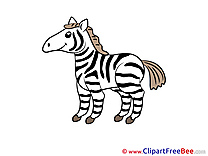 Zebra Cliparts printable for free
